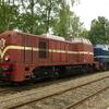 T03196 2530 1202 Loenen - 20120831 Terug naar Toen