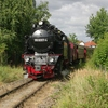 T03259 996001 Gernrode - 20120906 Harz