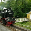 T03262 996001 Alexisbad - 20120906 Harz