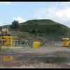 DSC 6638-border - Vink - Barneveld
