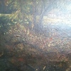 Oil on Canvas Brush Strokes - John Constable Painting (17...