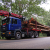 DSC 9998-border - Bas Transport, van der - Pu...