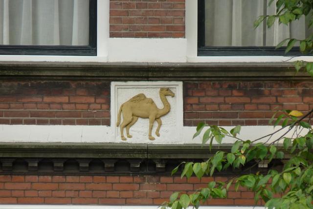 P1000527 amsterdamsite5