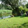 P1000614 - Vondelpark