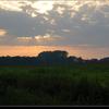 DSC 0790-border - Nature calls