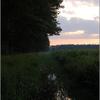 DSC 0795-border - Nature calls