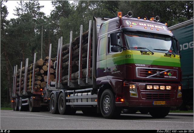 DSC 0897-border Wiel, van der - Drachten