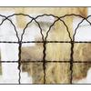 Spences Bridge Fence - British Columbia Canada