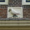P1000929 - amsterdam-herfst