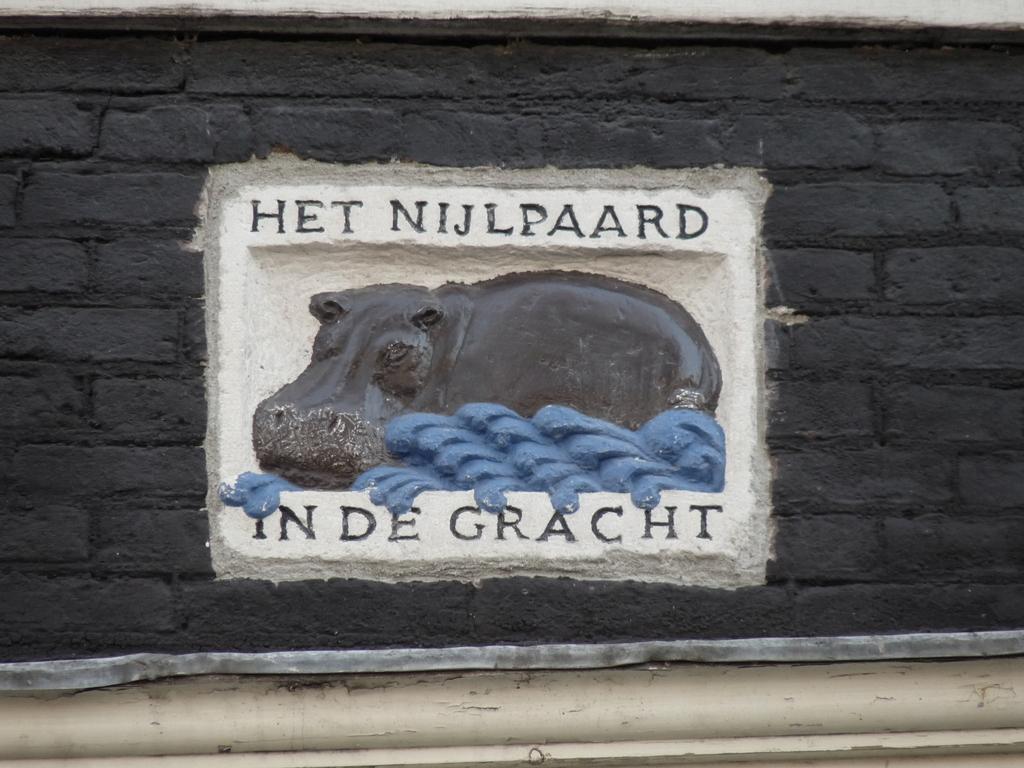P1000951 - amsterdam-herfst