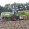 IMG 9961 - mais 2012