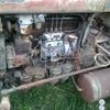 ZetorSuper 35 05 - tractor real