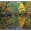 Tsolum River - Landscapes