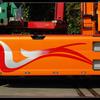 DSC 9098-border - Rijk, de - Nieuwkoop