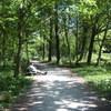 vondelpark 188 - Vondelpark
