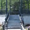 vondelpark 430 - Vondelpark