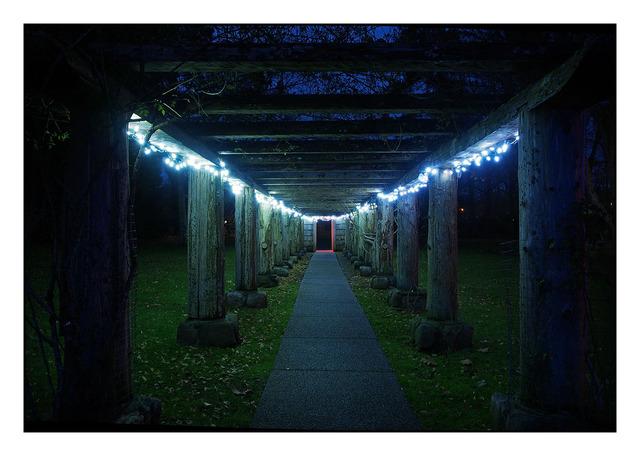 Filberg Night 03 Comox Valley