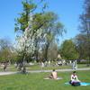 vondelpark 096 - Vondelpark