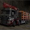 TSL™ Scania P460 8x4 ax - TSL™ Parking