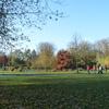 P1010715 - amsterdam-herfst