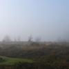 View - Nature calls