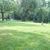 a0 014 - Vondelpark