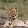 IMG 0585 - Kenya