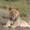 IMG 0589 - Kenya