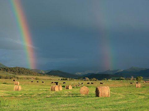 Duga - Page 3 Triple-quadruple-rainbows-spotted-file-double-fiel