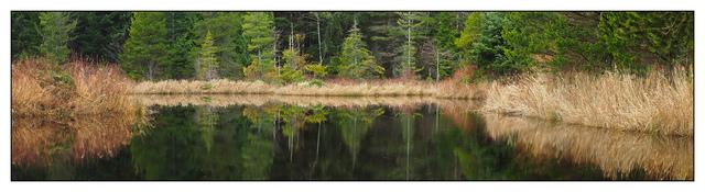 Lake Reflection Panorama Images