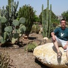 P1050073 - Cactus