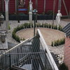 Tuin - Haag rond 't Rietple... - Buxus planten 't Rietplein ...