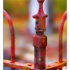 Iron Fence Art 5 - Comox Valley