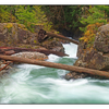 Little Qualicum Falls 2013 2 - Nature Images