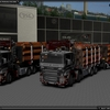 TSL™ Company 6x6 + 8x4 Full 1 - TSL™ HOLZ Transport