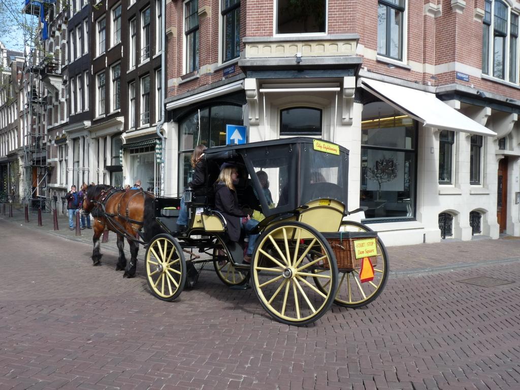 P1300989 - amsterdam