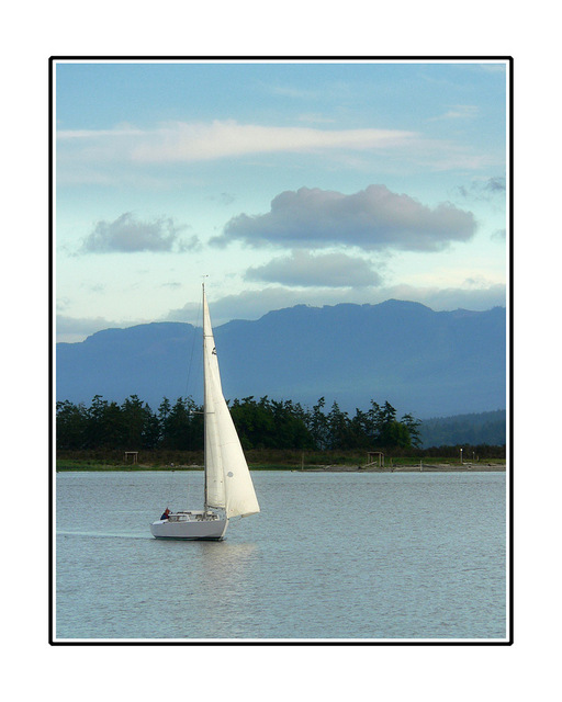 sailing Comox Valley