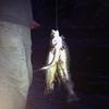 2354r2rtf1 - fish