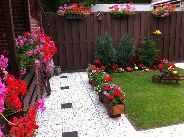 Cvijeće oko kuće  - Page 3 13297574
