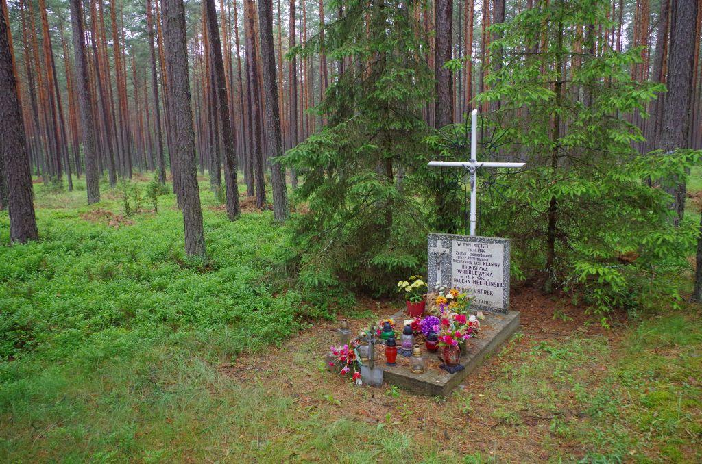 Grób w lesie -