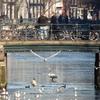 P1030202 - Amsterdam winter