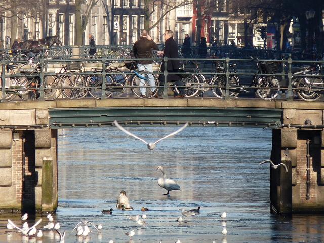 P1030202 Amsterdam winter