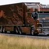 truckstar 2013 035 - truckster 2013