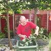 Tuin - Lijlindes snoeien 29... - In de tuin 2013