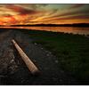 Deep Bay 2013 03 - Landscapes