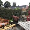 Tuin - 17-08-13 6 - In de tuin 2013