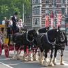 zzzP1280244 - amsterdam