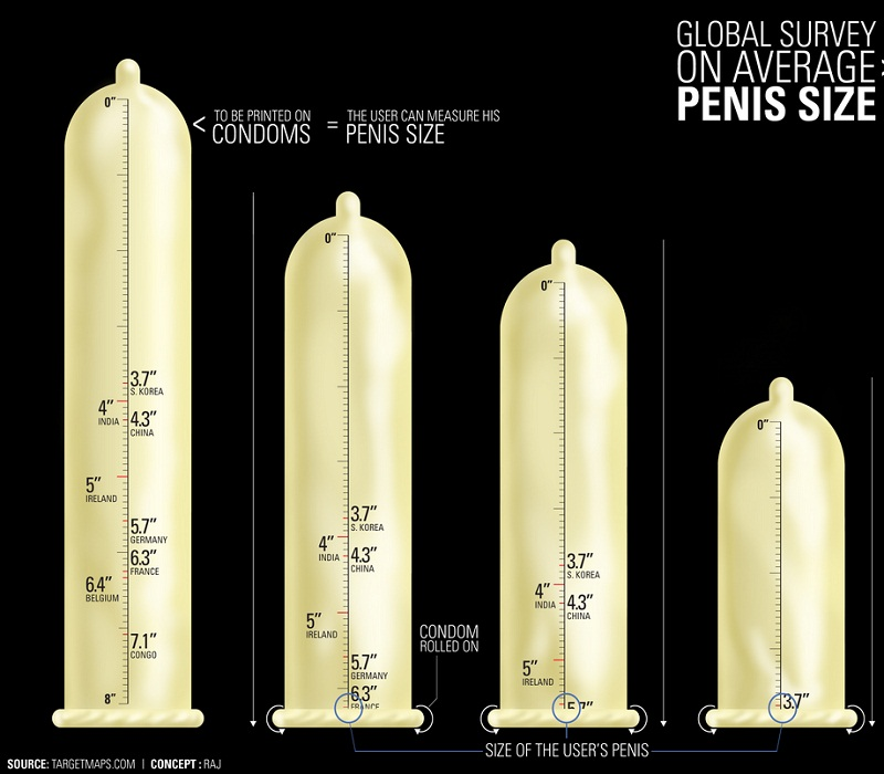 Penis average circumference — pic 15