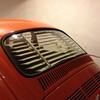 IMG 5206 - The super beetle