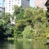 IMG 9835 - NYC!